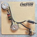 Emerson Custom - Vormontiertes Set PRS - 2 Knopf - 500k - fits to PRS®